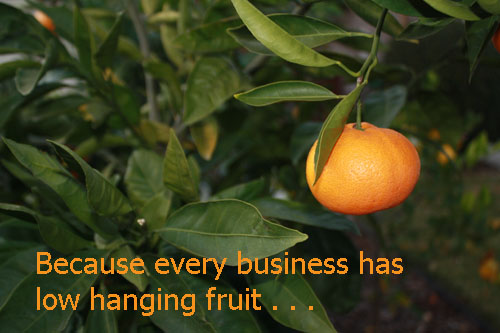 low hanging orange